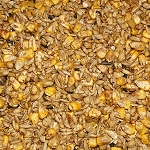 COB (Corn, Oats, Barley & Molasses)